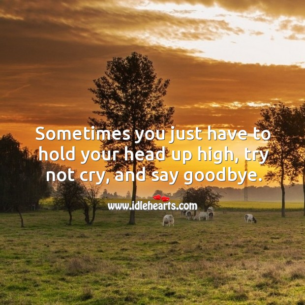 Sometimes you just have to hold your head up high, try not cry, and say goodbye. Image