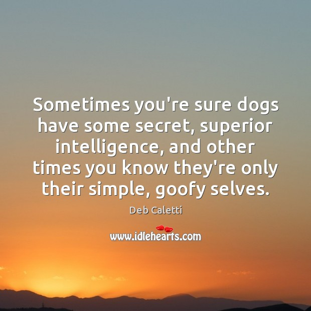 Sometimes you're sure dogs have some secret, superior intelligence, and other times Deb Caletti Picture Quote
