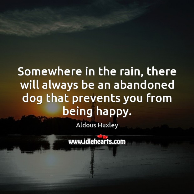Image, Somewhere in the rain, there will always be an abandoned dog that