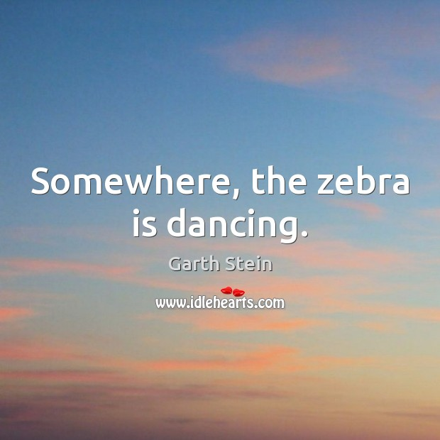 Somewhere, the zebra is dancing. Garth Stein Picture Quote
