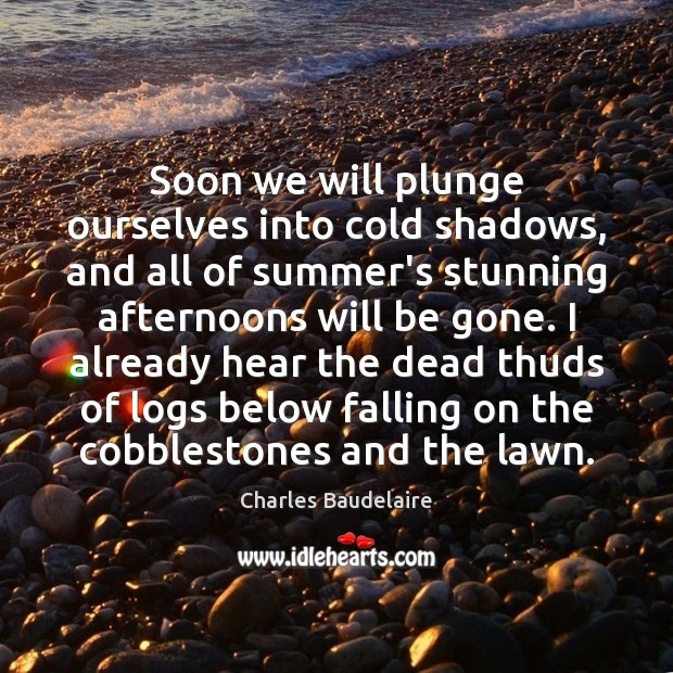 Soon we will plunge ourselves into cold shadows, and all of summer's Charles Baudelaire Picture Quote