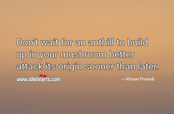 Don't wait for an anthill to build up in your mushroom better attack its origin sooner than later. African Proverbs Image