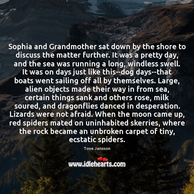 Sophia and Grandmother sat down by the shore to discuss the matter Tove Jansson Picture Quote