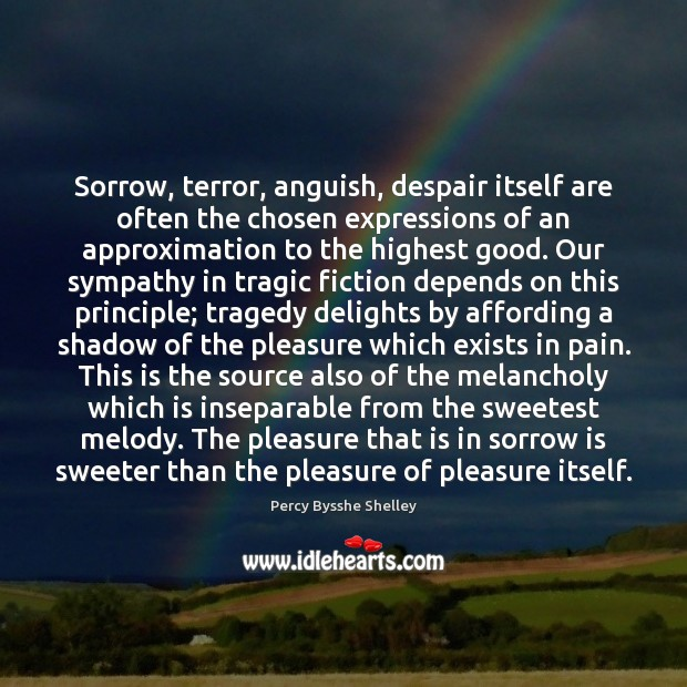 Sorrow, terror, anguish, despair itself are often the chosen expressions of an Percy Bysshe Shelley Picture Quote