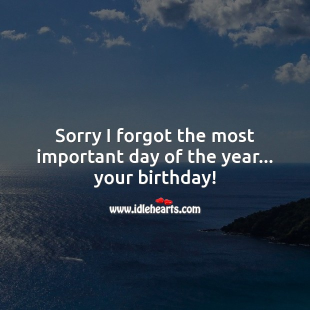 Sorry I forgot the most important day of the year… your birthday! Belated Birthday Messages Image