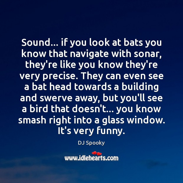 Sound… if you look at bats you know that navigate with sonar, DJ Spooky Picture Quote