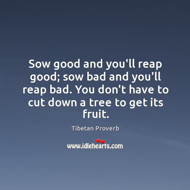 Sow good and you'll reap good; sow bad and you'll reap bad. Tibetan Proverbs Image