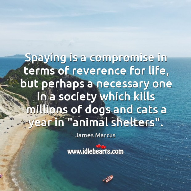 Spaying is a compromise in terms of reverence for life, but perhaps Image