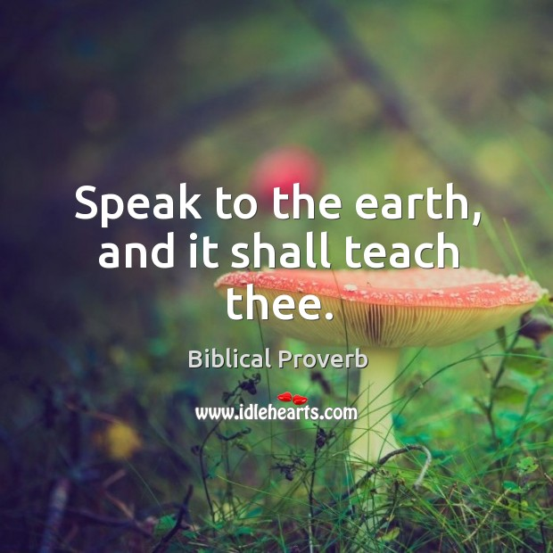 Speak to the earth, and it shall teach thee. Biblical Proverbs Image