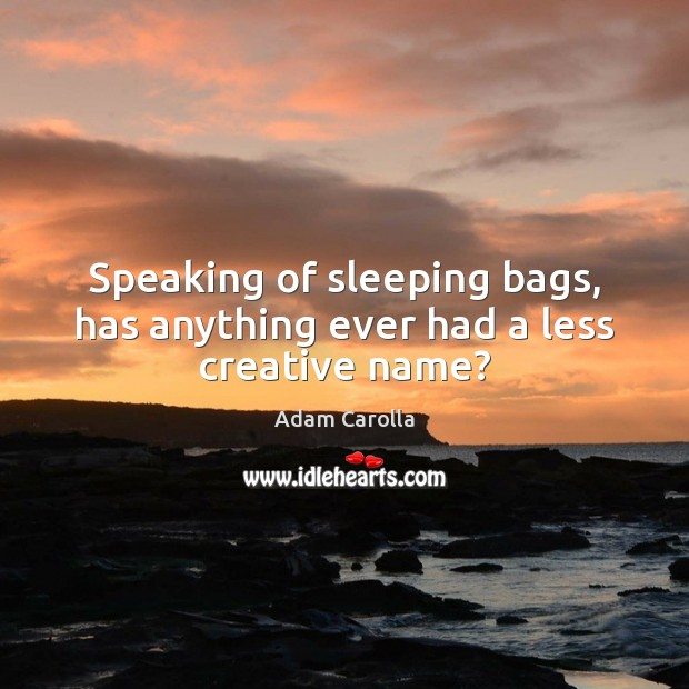 Speaking of sleeping bags, has anything ever had a less creative name? Image