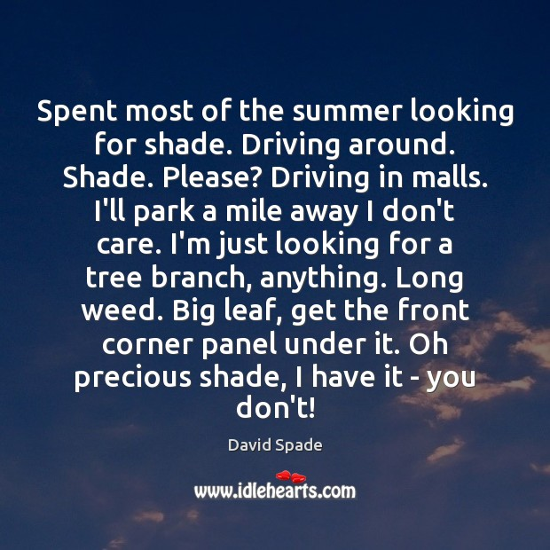 Spent most of the summer looking for shade. Driving around. Shade. Please? David Spade Picture Quote