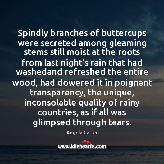 Image, Spindly branches of buttercups were secreted among gleaming stems still moist at