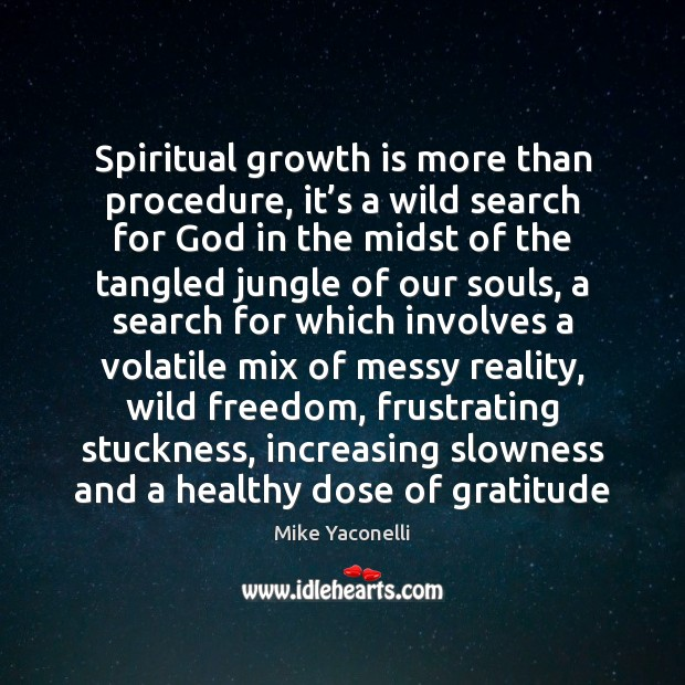 Spiritual growth is more than procedure, it's a wild search for Image