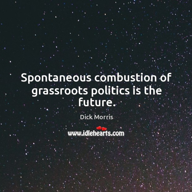 Spontaneous combustion of grassroots politics is the future. Image