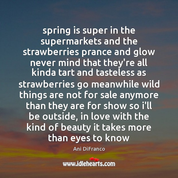 Spring is super in the supermarkets and the strawberries prance and glow Ani DiFranco Picture Quote