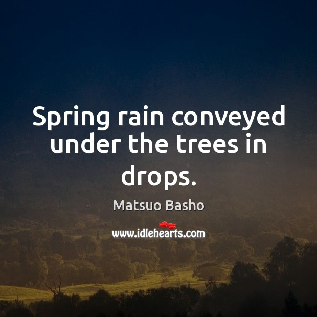 Image, Spring rain conveyed under the trees in drops.