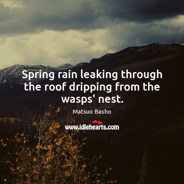 Spring rain leaking through the roof dripping from the wasps' nest. Image