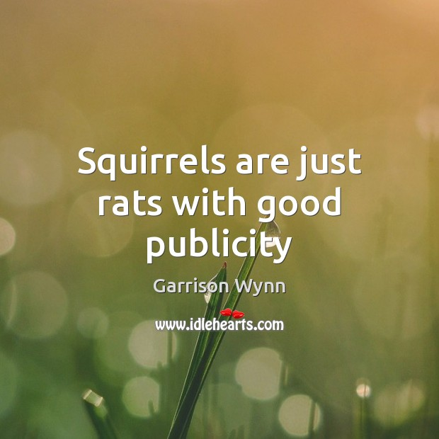 Image, Squirrels are just rats with good publicity