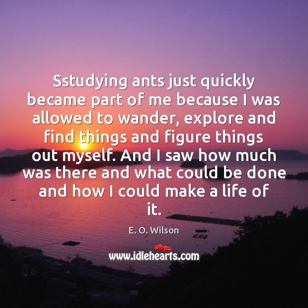 Image, Sstudying ants just quickly became part of me because I was allowed