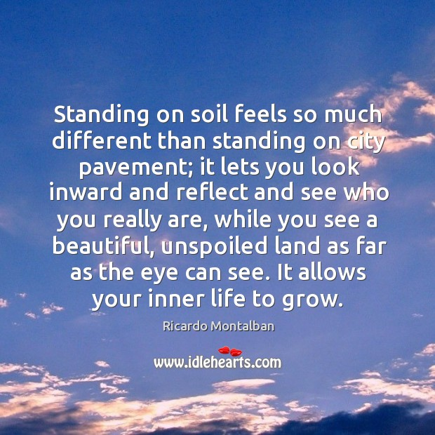 Standing on soil feels so much different than standing on city pavement; it lets you look inward and.. Ricardo Montalban Picture Quote