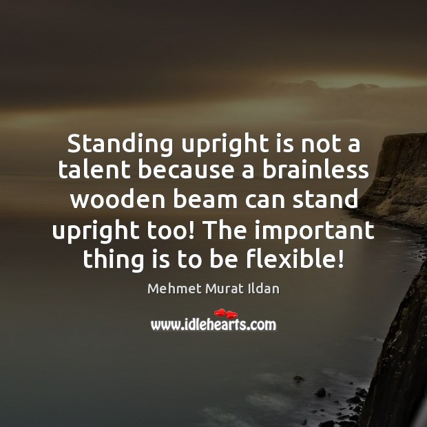 Image, Standing upright is not a talent because a brainless wooden beam can