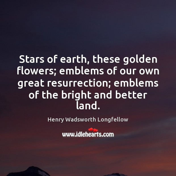 Image, Stars of earth, these golden flowers; emblems of our own great resurrection;