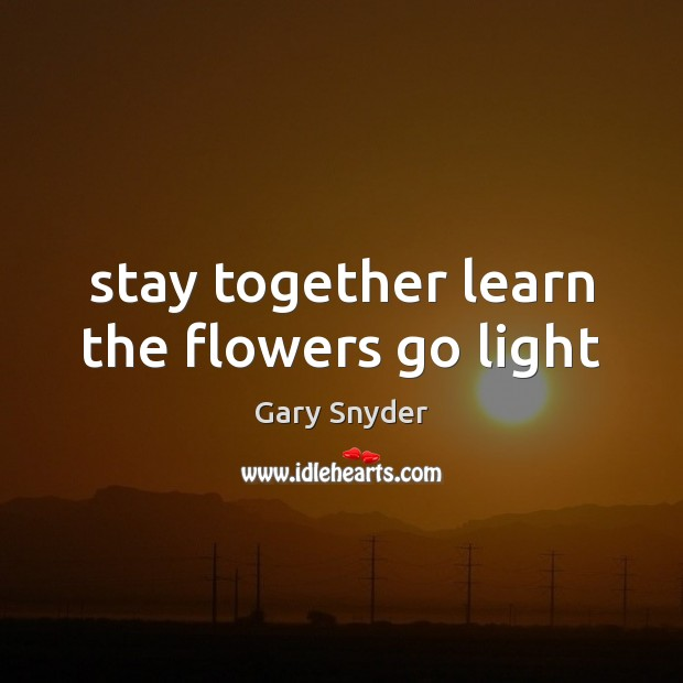Stay together learn the flowers go light Image