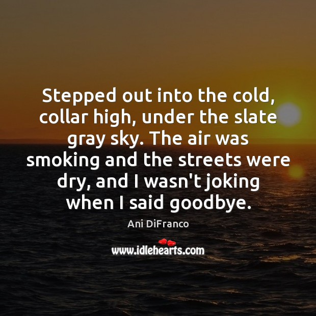 Stepped out into the cold, collar high, under the slate gray sky. Goodbye Quotes Image