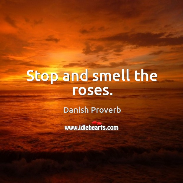 Image, Stop and smell the roses.