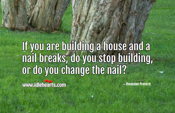 If you are building a house and a nail breaks, do you stop building, or do you change the nail? Rwandan Proverbs Image