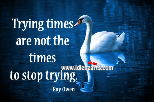 Trying Times Are Not The Times To Stop Trying.