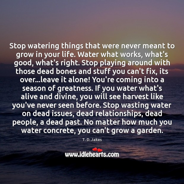 Stop watering things that were never meant to grow in your life. Image
