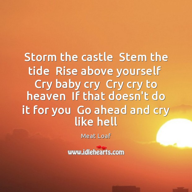 Storm the castle  Stem the tide  Rise above yourself  Cry baby cry Image