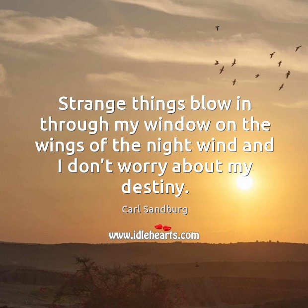 Strange things blow in through my window on the wings of the night wind and Image