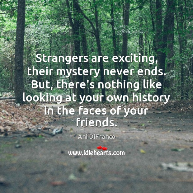 Strangers are exciting, their mystery never ends. But, there's nothing like looking Ani DiFranco Picture Quote