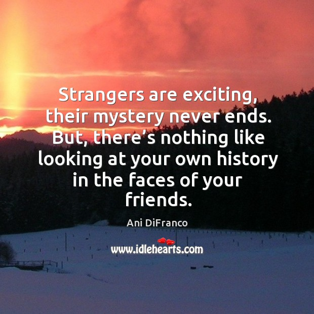 Strangers are exciting, their mystery never ends. Ani DiFranco Picture Quote
