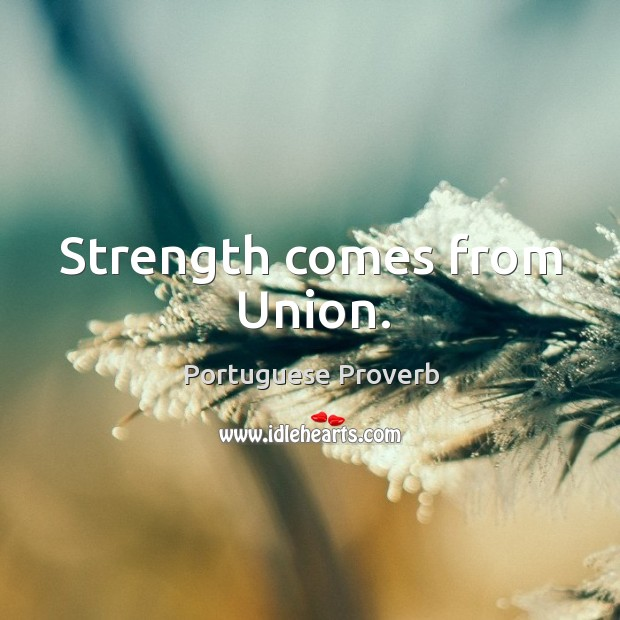Strength comes from union. Image