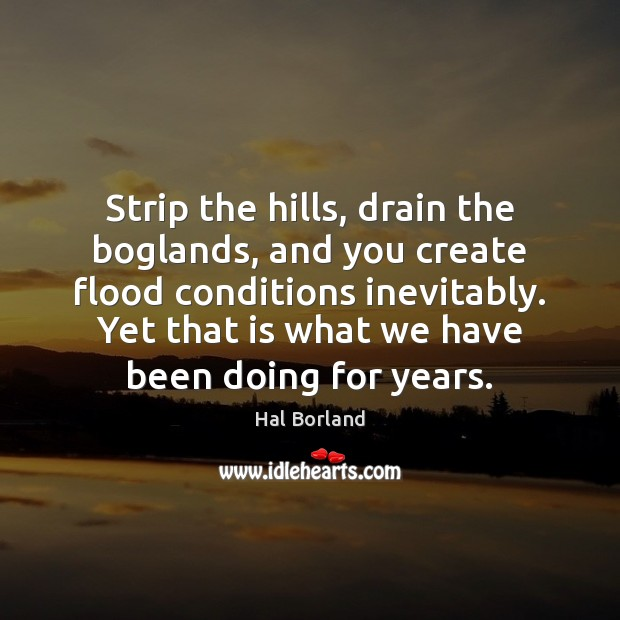 Hal Borland Picture Quote image saying: Strip the hills, drain the boglands, and you create flood conditions inevitably.