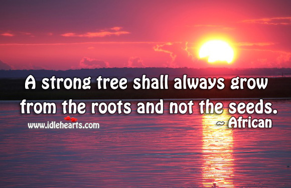 Image, A strong tree shall always grow from the roots and not the seeds.