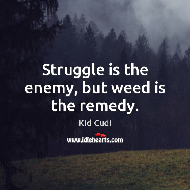 Struggle is the enemy, but weed is the remedy. Kid Cudi Picture Quote