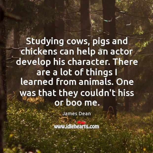 Studying cows, pigs and chickens can help an actor develop his character. Image
