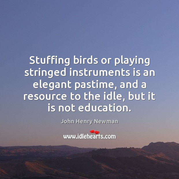 Stuffing birds or playing stringed instruments is an elegant pastime, and a John Henry Newman Picture Quote