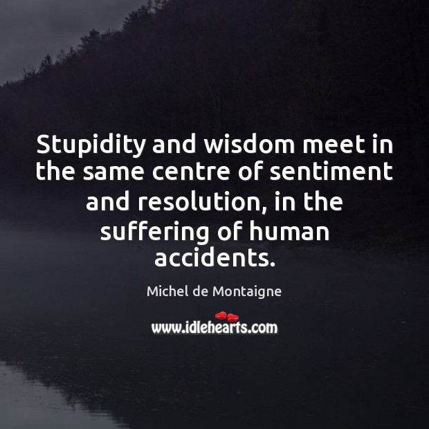 Image, Stupidity and wisdom meet in the same centre of sentiment and resolution,