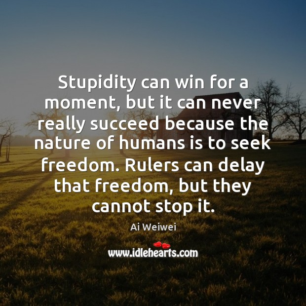Stupidity can win for a moment, but it can never really succeed Image