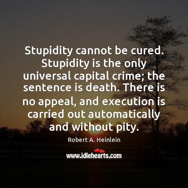 Image, Stupidity cannot be cured. Stupidity is the only universal capital crime; the