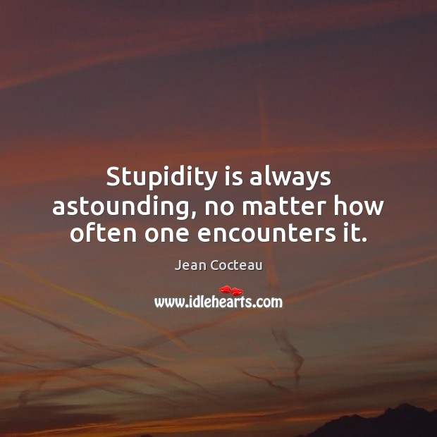 Stupidity is always astounding, no matter how often one encounters it. Image