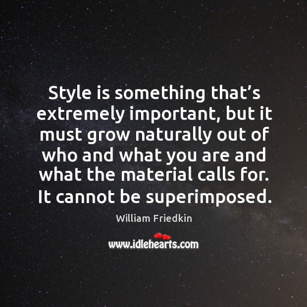 Style is something that's extremely important, but it must grow naturally out of who and what Image