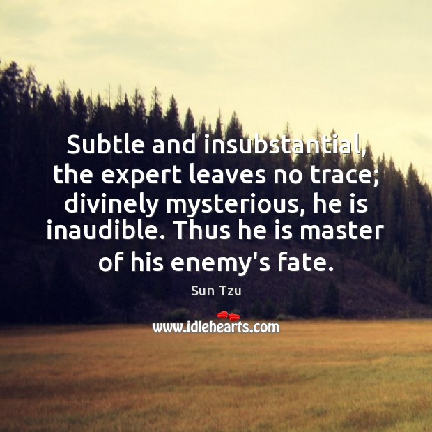 Subtle and insubstantial, the expert leaves no trace; divinely mysterious, he is Image
