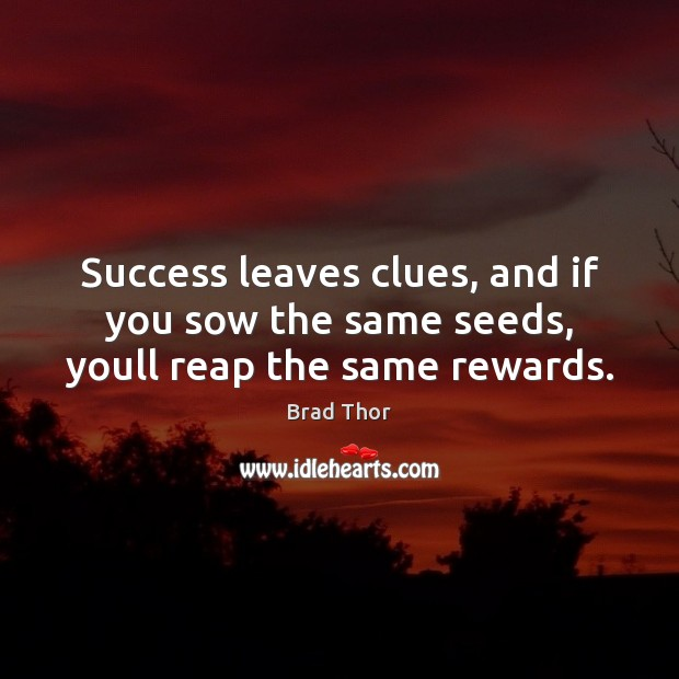 Success leaves clues, and if you sow the same seeds, youll reap the same rewards. Brad Thor Picture Quote