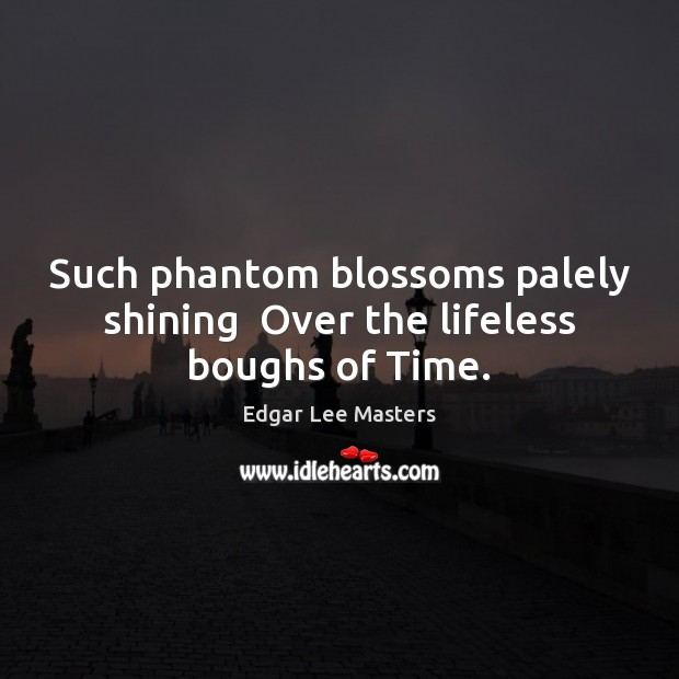 Such phantom blossoms palely shining  Over the lifeless boughs of Time. Image